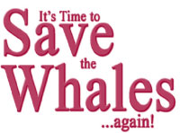 Whales Revenge- Petition to end whaling